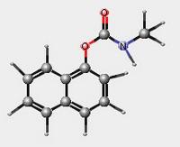 modèle moléculaire du carbaryl