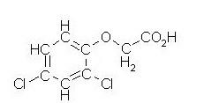 formule semi-développée du 2,4-D