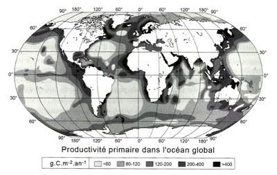 productivité primaire