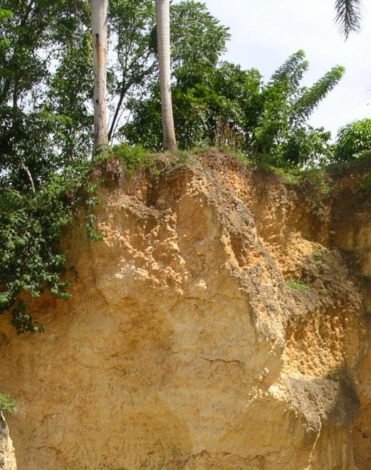 Le sol un patrimoine durable eduterre usages - Terre et eau witry les reims ...
